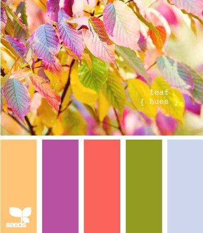 Warm Colorful leaf hues  Design Seeds