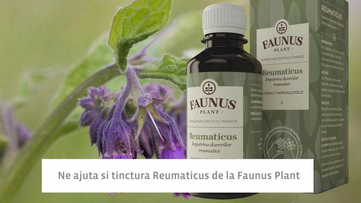 Solutii antireumatice de la Faunus Plant (https://faunusplant.ro/?s=Reumaticus&post_type=product), din plante culese cu grija din Muntii Apuseni, remedii naturale preparate manual, cu respect pentru traditie, pentru natura si pentru consumatori! Retete traditionale pentru sanatatea ta! - Produsele FAUNUS PLANT! #remediinaturale #plantemedicinale #fitoterapie #produseromanesti #branduriromanesti #FaunusPlant #ingredientenaturale #reumatism #artroza #artrita #bolireumatice #durerimusculare…