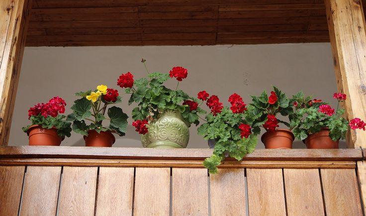 A wy jaki macie pomysł na jesienną aranżację tarasu? :)  #deskitarasowe