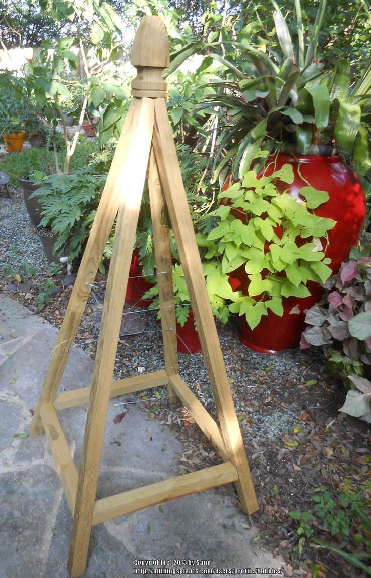 French tuteur trellis woodworking projects amp plans - Constructing A Garden Tuteur All Things Plants