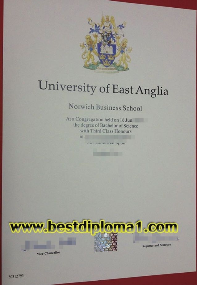 21 best Kursbevis images on Pinterest Award certificates - copy university diploma templates