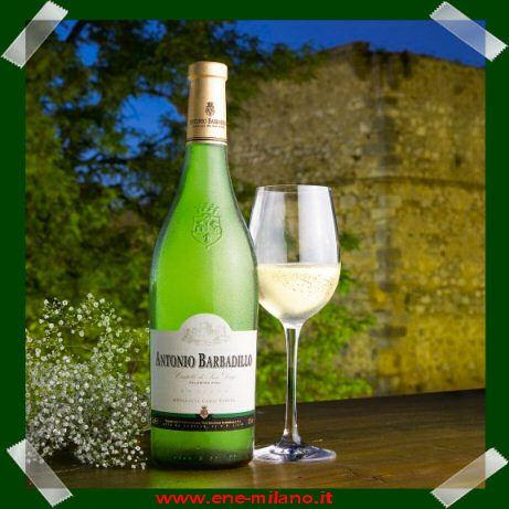 Acquista una cassa da 6 Bottiglie E 1 te la Regaliamo noi! Euro 53,00 http://www.ene-milano.it/IT/castillo-san-diego-barbadillo