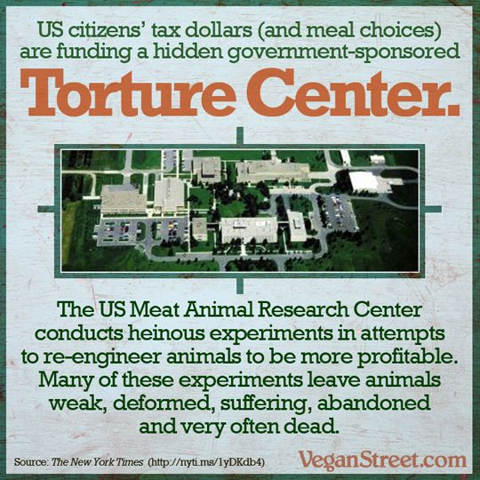 public policy for animal welfare in This policy requires that assured institutions base their programs of animal care and use on the guide for the care and use of laboratory animals and that they comply with the regulations (9 cfr, subchapter a) issued by usda under the animal welfare act.