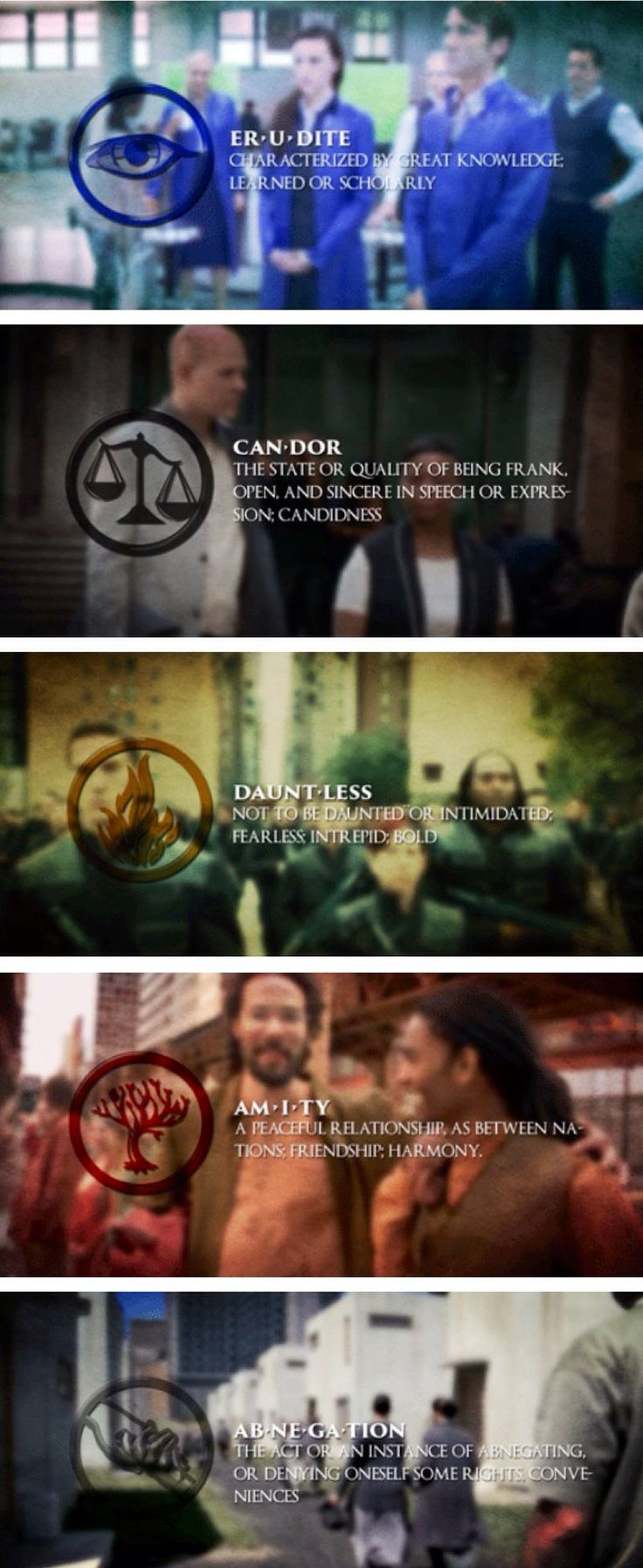 The Factions ~ Dauntless ~ Abnegation ~ Erudite ~ Candor ~ Amity