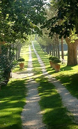 Country road . Avignon~ France   ..rh: Country road . Avignon~ France   ..rh