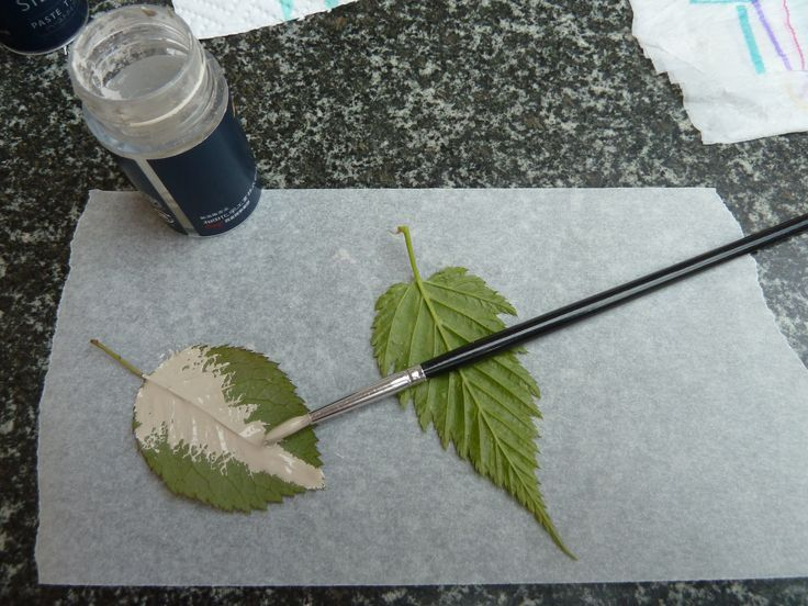 Art Clay Silver Paste , creating a natural leaf - Per creare una foglia realistica su spennella una foglia con il metal clay in crema