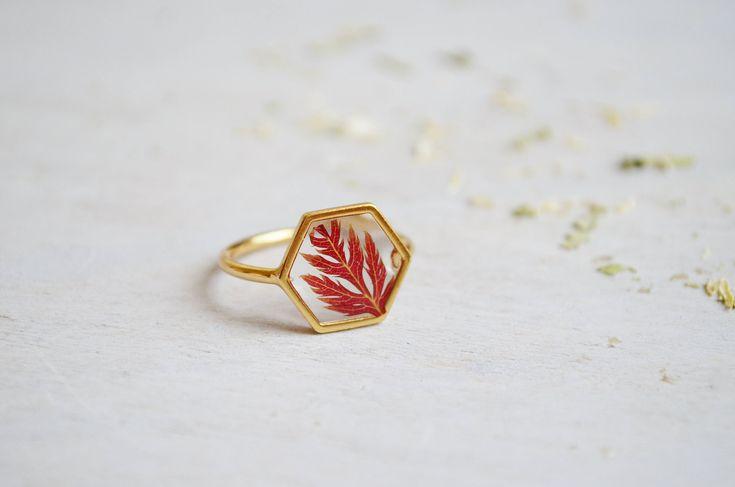 Maple leaf ring Hexagonal ring Veritable pressed leaf ring Resin ring Pressed maple leaf Red maple leaf ring Gold 16K plated Geometrical by ChlorophyllJewelry on Etsy https://www.etsy.com/listing/538144307/maple-leaf-ring-hexagonal-ring-veritable