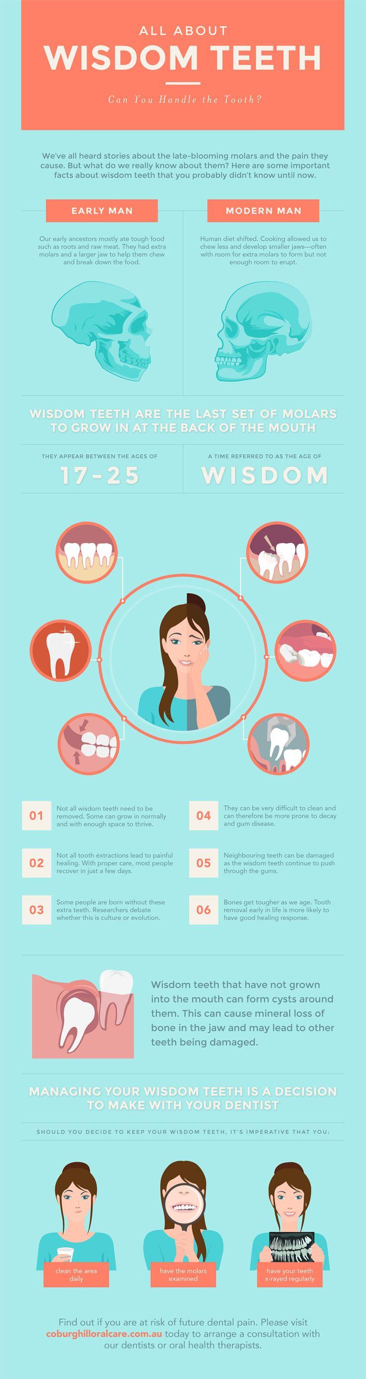 Infographic amazing wisdom teeth facts wisdom teeth