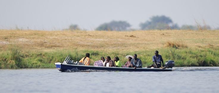 Tour Boat on Chobe River, Chobe National Park, near Kasane, Chobe Province, Botswana