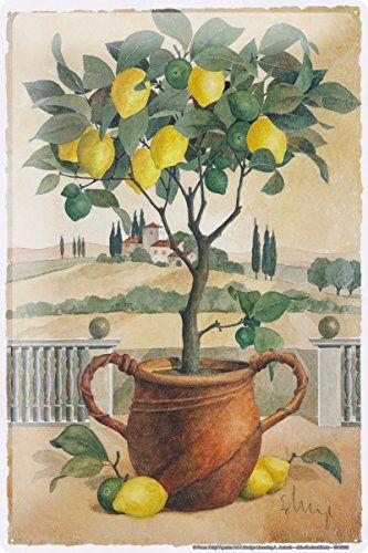 Franz Heigl Still Life Lemon Tree Tin Sign