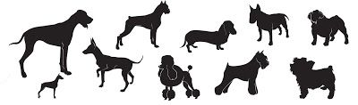 Free SVG collection of dogs including daschund poodle terrier