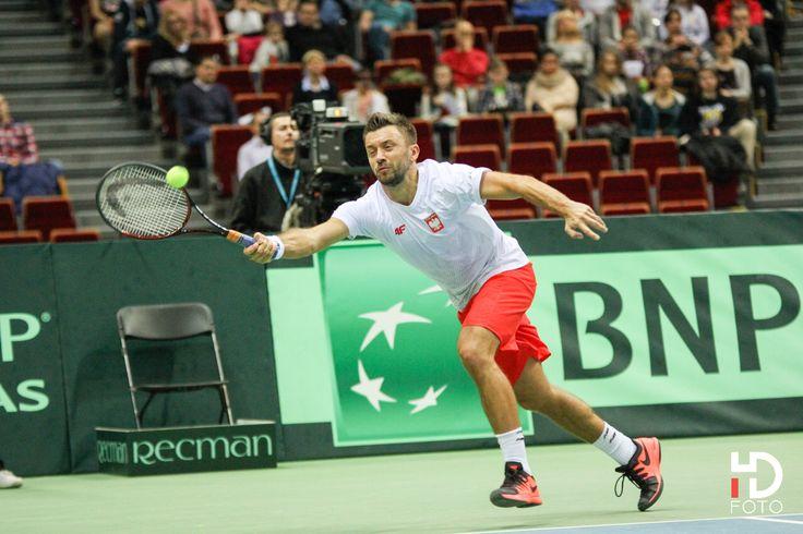 Davis Cup