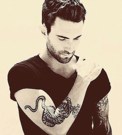 Adam Levine ♬
