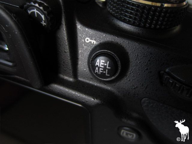 Nikon D3200 AE-L/AF-L Button: If you prefer your subject to be off-center, press this button to focus on your subject in the center of the frame. This allows your camera to keep them in focus when you position them.