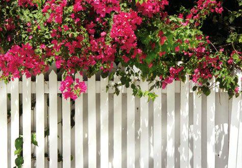 Bygg ett nytt staket själv - viivilla.se