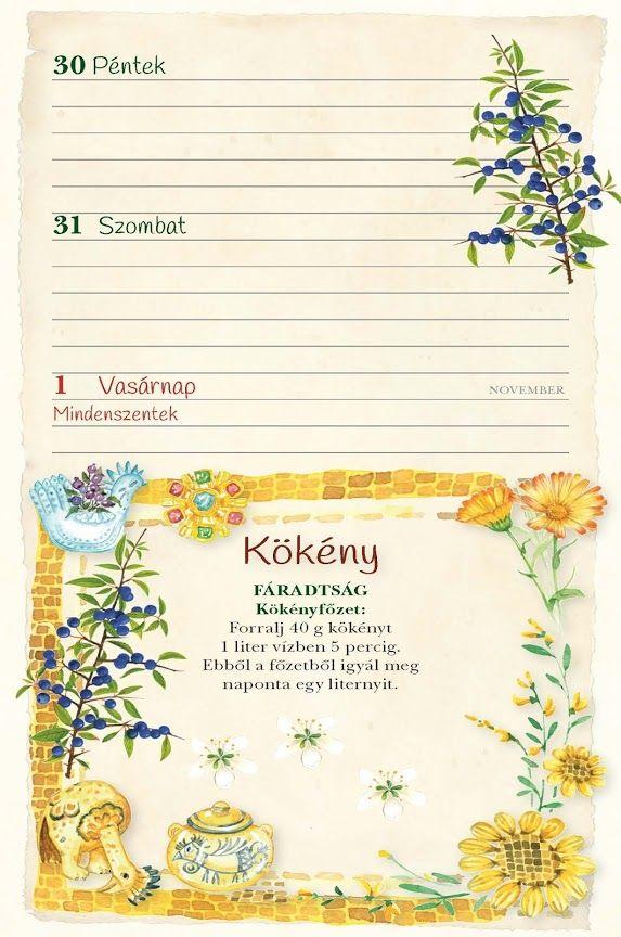 Különleges határidőnaplók 2015-re akvarellekkel, receptekkel, idézetekkel | Életszépítők