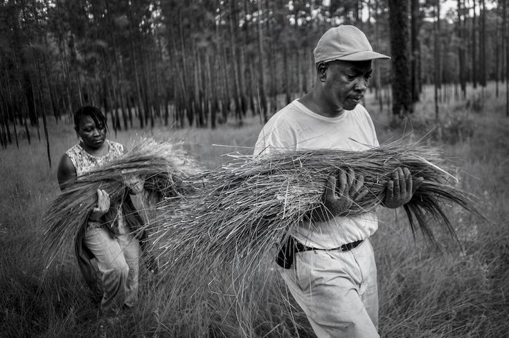 """Daryl Stoneworth and his wife Angela carry the sweetgrass they harvested...They were free to continue long-held traditions of """"making seagrass baskets, fishing with handmade nets, burying their dead by the seashore, and living life simply,"""" as Marovich wrote in the introduction to his book, """"Shadows of the Gullah Geechee."""" 201307270392"""