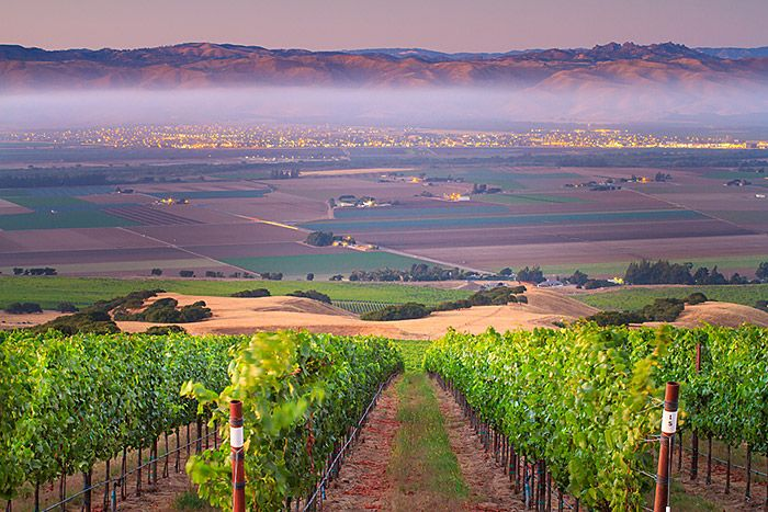 Salinas Valley, California