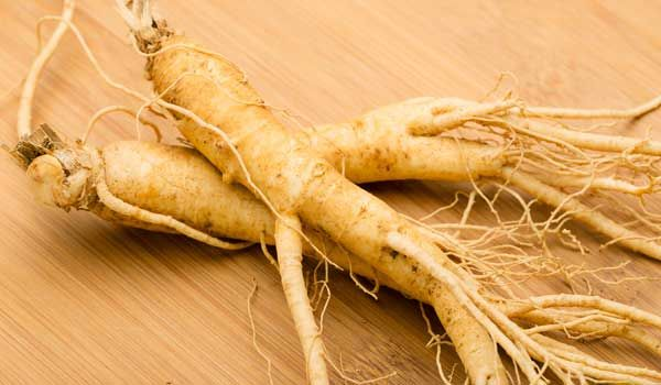 Ginseng is considered as one of the most used herbal supplements today not just…