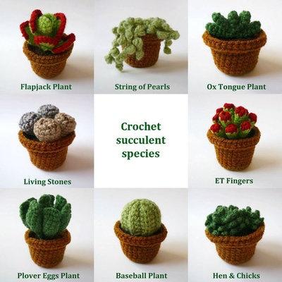 Crochet Cacti/Succulent Plant in Pot byLunasCrafts