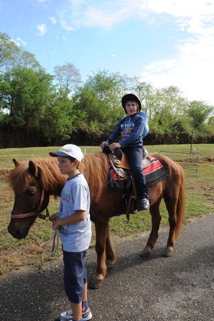 battesimo della sella su cavalli di aziende agricole bergamasche durante fiera di sant'alessandro 2012