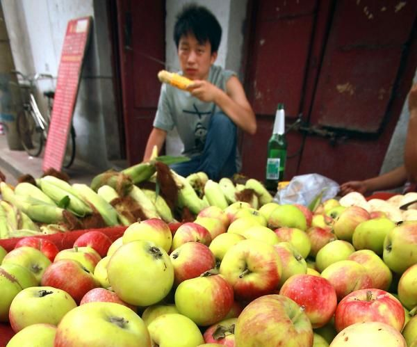 Food tracing a growing concern for global food supply