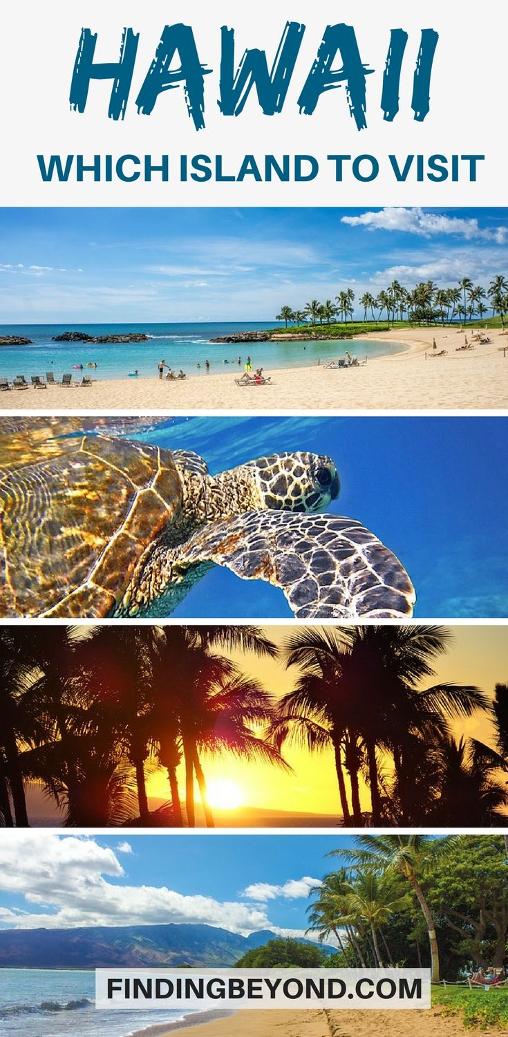 Are you about to visit #Hawaii for the first time but not sure where to go? Read this handy little guide that breaks down the best island options. | Best parts of Hawaii | #TopattractionsofHawaii | Top tips for Hawaii | Where to go in Hawaii | When to visit Hawaii | Visiting Hawaii | What Island to visit in Hawaii | #BestHawaiiIsland Highlights of Hawaii | #hawaiihightlights #bestofhawaii #explorehawaii #hawaiitips #hawaiiguides #bestofhawaii #hawaiiislands #visithawaii #explorehawaii