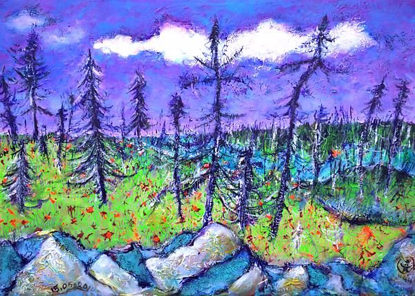 """The texture can """"build up"""" your image...like in this taiga landscape from Quebec"""