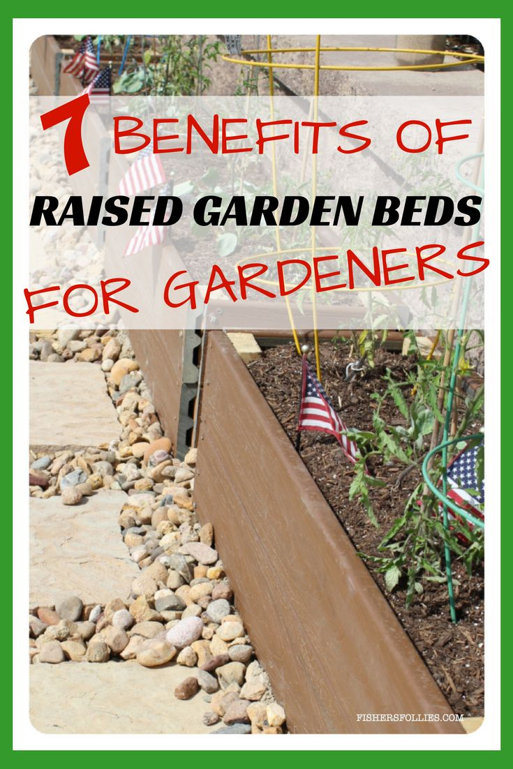 The benefits of raised garden beds for gardeners from utilizing small spaces to less weeding are huge!  Better growing conditions for plants with better drainage and loose soil, which could mean a higher yield!  Why not get started today with planting your garden in raised garden beds and reap the benefits of vegetable gardening.  Yay!  #raisedgardenbeds  #garden #gardening