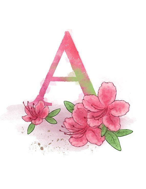 Art print of my own original mixed media illustration.    Letter A Azalea - Part of an alphabet/initials series featuring natural objects such