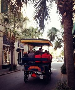 Charleston Attractions: Activities in Charleston, SC @Wesley Archambault Couch horse drawn carriage