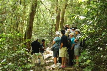Full Day Tour to The Izalco, The Santa Ana and Cerro Verde Volcano, Lake Coatepeque, Joya de Cerén and San Andrés Ruins. From USD $129.00 View more tours & activities at: www.globaladventures.us