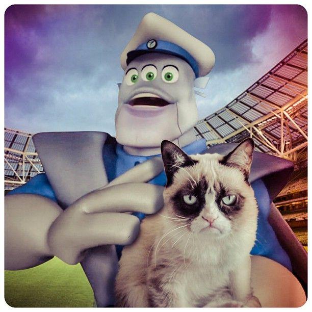 #grumpycat #spacesports #funny #follow