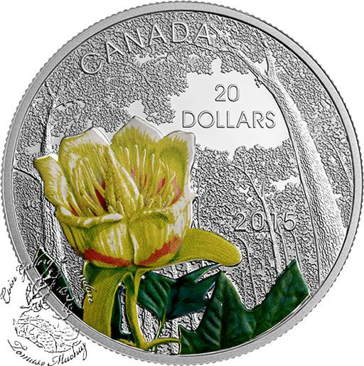 Coin Gallery London Store - Canada: 2015 $20 Forests of Canada: Carolinian Tulip-Tree Silver Coin, $99.95