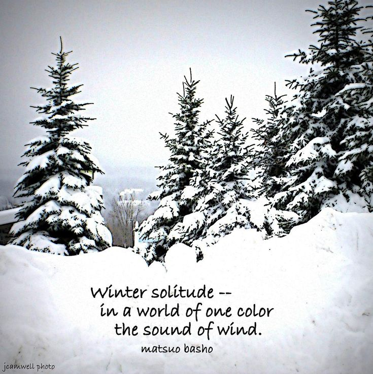 Winter solitude -- in a world of one color, the sound of wind. ~ Basho