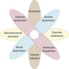 Pathophysiology of heart failure graphic #Cardiac #MedSurg #Nursing