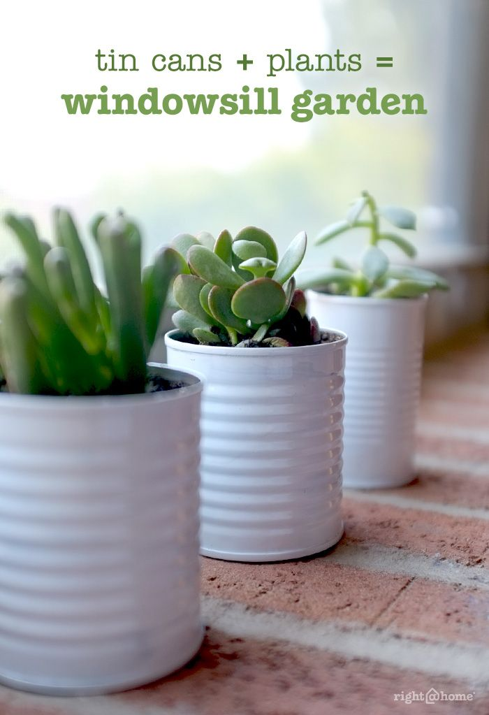 DIY Herb Garden: Most herbs love sun and are made for bright kitchens. Line your window sill with small pots, or purchase a long plastic planter made for sills. Or, experiment with various containers, like colanders or antique watering cans.
