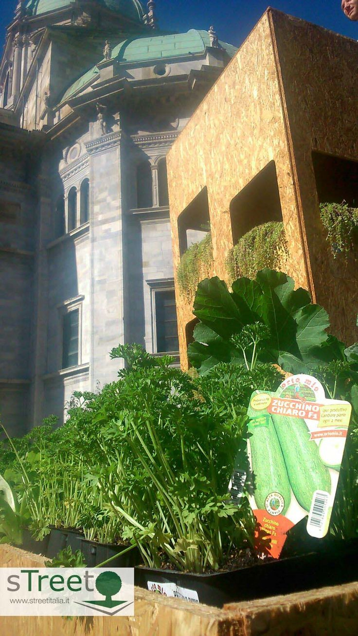 Armadio della Scoperta . Sponsor OrtoMio di Forlì