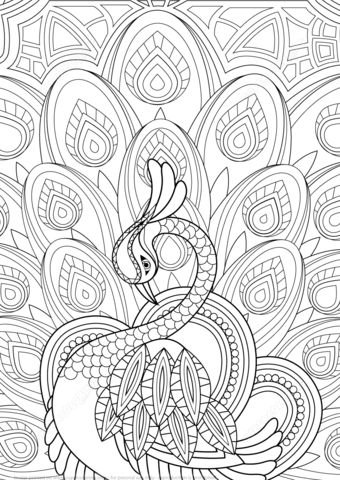 Zentangle Peacock with Ornament coloring page from Peacocks category. Select from 21123 printable crafts of cartoons, nature, animals, Bible and many more.