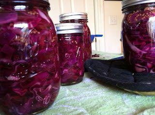Spiced Red Cabbage - This ones for Dad! - Canning Homemade!