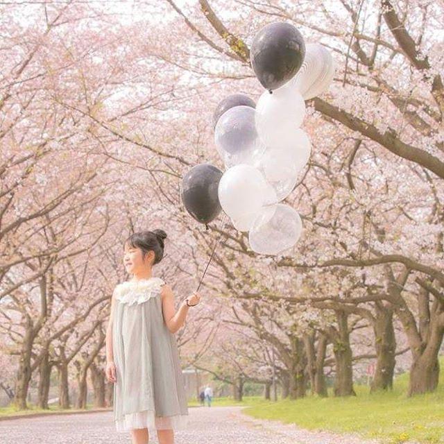 【maryandco】さんのInstagramをピンしています。 《2017年始のご挨拶は、昨年春に撮影した桜のお写真で(*^^*)この寒い季節を越えたら、またこの麗らかな季節ががやってくると思うと寒さもその序曲のように感じます☆  カメラマン@fumi0416 バルーン @maryandco  #あけましておめでとう#謹賀新年 #2017#春が待ち遠しい#桜#バースデー#バースデーフォト#記念写真#娘の誕生日#誕生日#バルーン#公園#春#birthday#spring#happynewyear #anniversary#cherry#cherryblossom #park#party#garden》