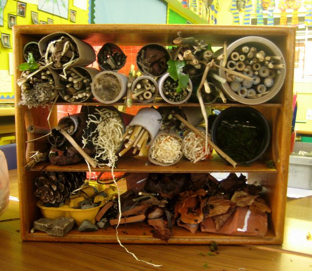Create a bug hotel to encourage insects into your garden. Beneficial for the garden and fascinating for kids too.