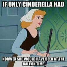 Cinderella Norwex