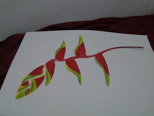 Natural drawing