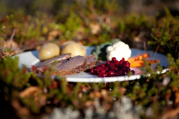 A classic dish from the Scandinavian wilderness. | Nordic Choice #localeataward