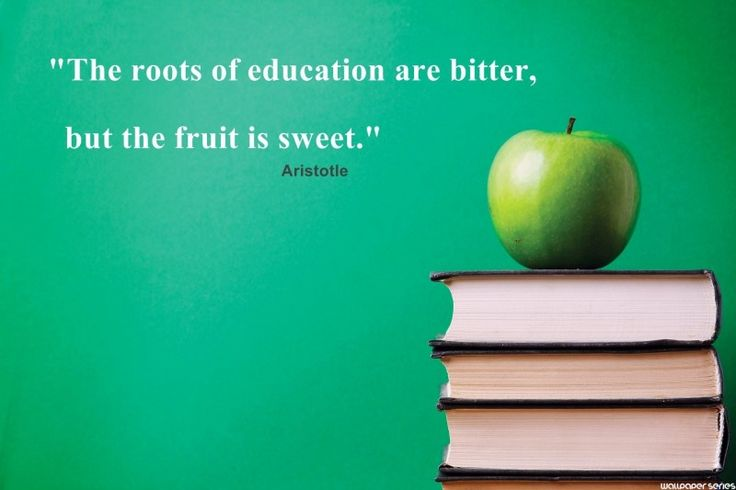 Education Quotes On Pinterest: 17 Best Quotes About Education On Pinterest