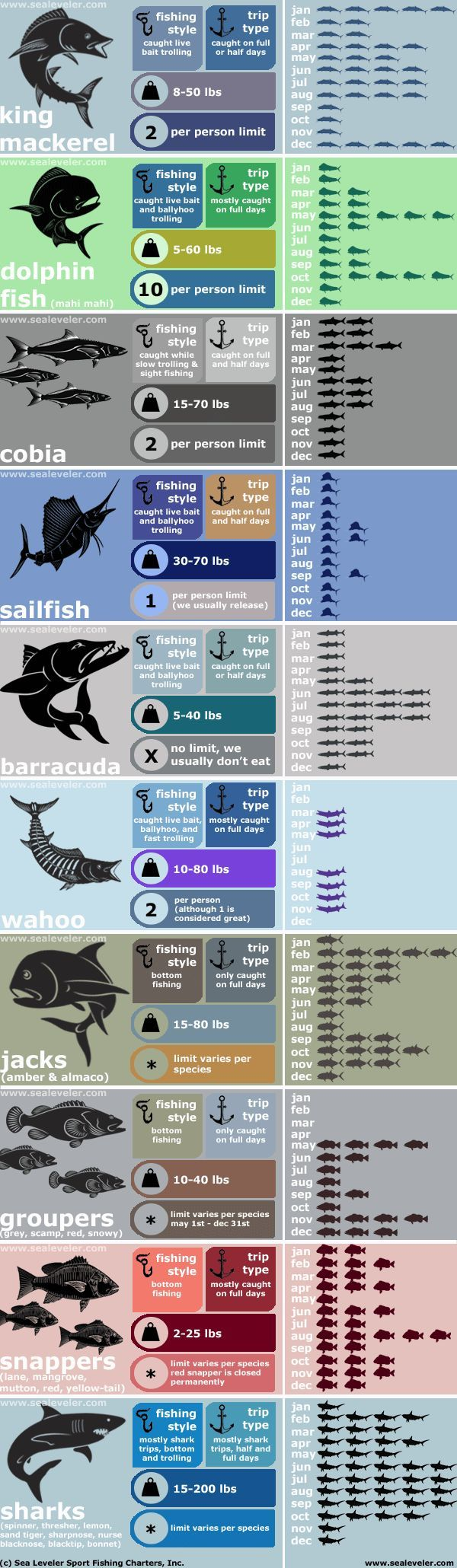 Sea leveler sport fishing charters infographic fish caught by month and type of charter trip