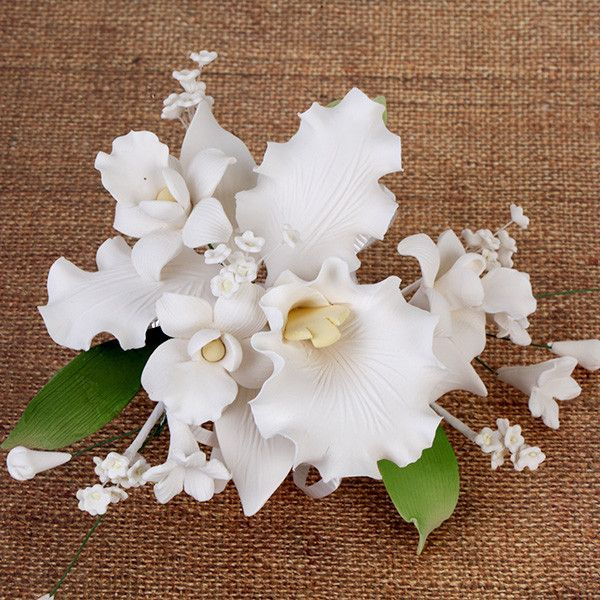 Orchids are an elegant and exotic flower. With their graceful and unique appearance, orchids are the perfect flower for weddings, birthdays, and a variety of celebrations. Adding a sense of refinement