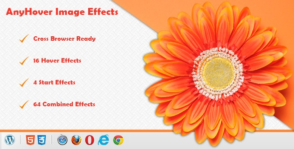 Wordpress Plugin - Anyhover Image Effects