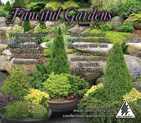 fanciful gardens plants are a great to to get started with the year round
